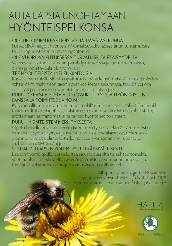 Hyönteispelon ohjeistus laspsille