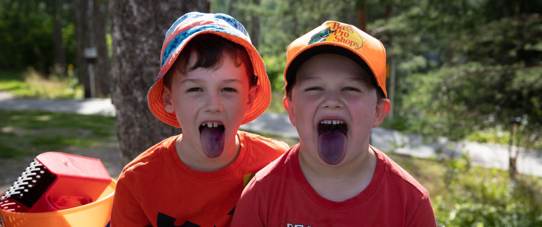 Kaksi poikaa istuu metsässä ja näyttää mustikan värjäämiä kieliään.