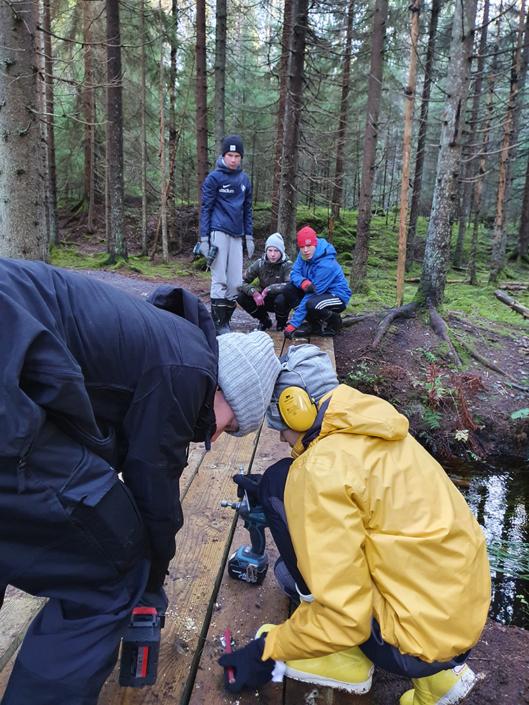 Nuoret rakentavat puista siltaa metsässä